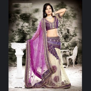 Brown & Pink Embroidered Saree