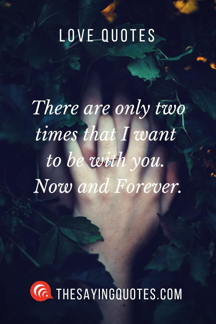Forever True Love Quotes : forever, quotes, Quotes, People, Saying, Forever, Quotes,, Relationships
