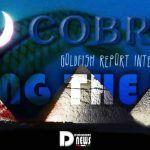 Cobra Unire la Luce Intervista Goldfish Report