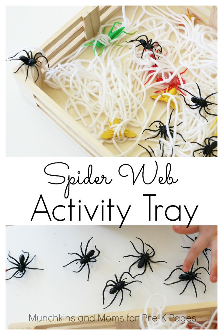 Spider Web Activity Tray for open ended exploration, learning, and fun in your preschool classroom!