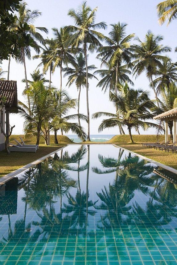 Een trendy boutique resort direct aan het zandstrand gelegen!   http://www.333travel.nl/hotel/sri-lanka/333trendy-the-frangipani-tree/informatie?productcode=H5201