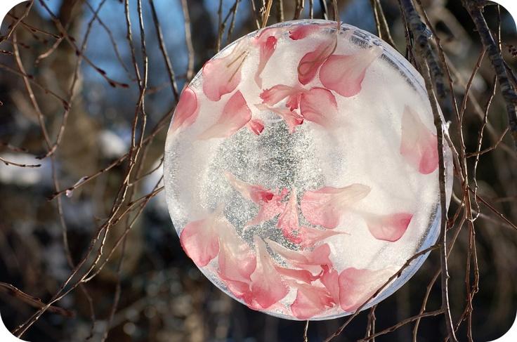 Eigenlijk niet voor in huis ;) Vul een emmer met een laagje water, doe er rozenblaadjes in en touw om het later aan op te hangen, laat dit bevriezen en hang het op in de tuin! Moet het buiten nog wel blijven vriezen natuurlijk