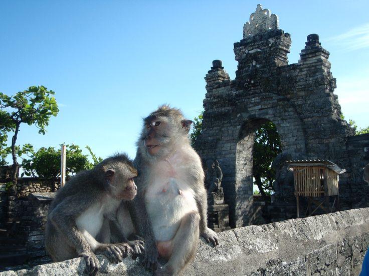 guide voyage de Bali: pour vous aider à organiser votre voyage, climat, monnaie, coutumes, prix, visa...