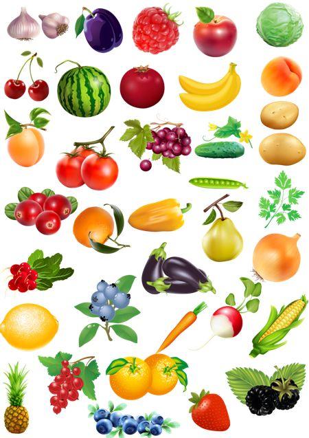 Grafika Zöldség Gyümölcs bogyók