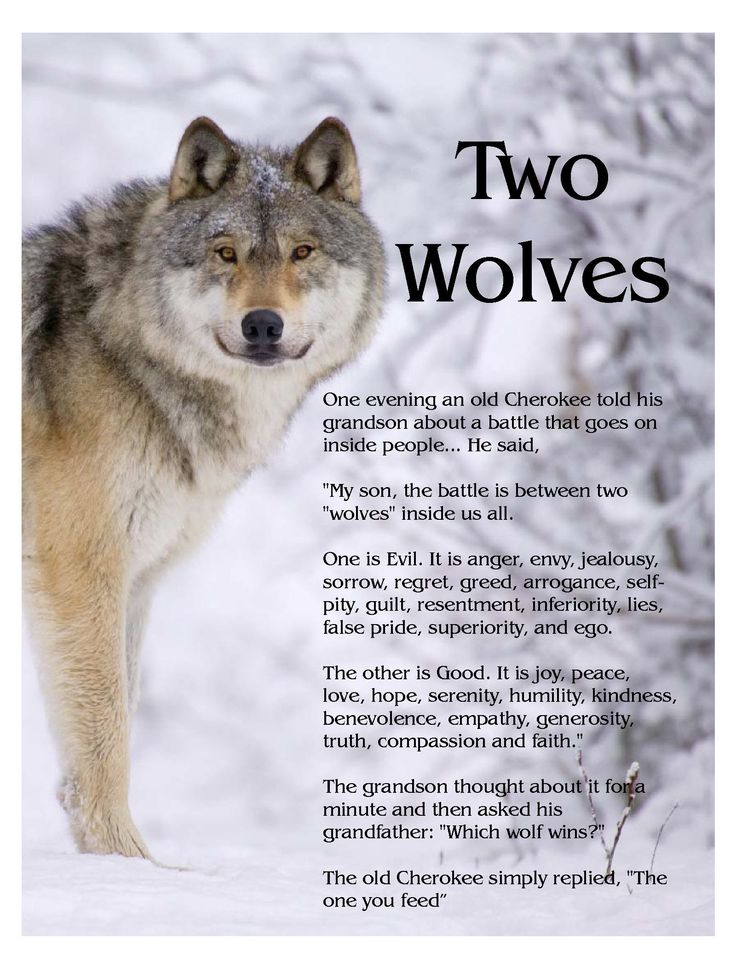 "The Story of Two Wolves...  An old Cherokee told his grandson,  ""My Son, there is a battle between two wolves inside us all.   One is Evil. It is anger, jealousy,  greed, resentment, inferiority,  lies and ego. The other is Good.  It is joy, peace, love, hope, humility,  kindness, empathy and truth.""  The boy thought about it, and asked,  ""Grandfather, which wolf wins?""  The old man quietly replied,  ""The one you feed.""  ~ Author Unknown http://Thanks2net.com/"