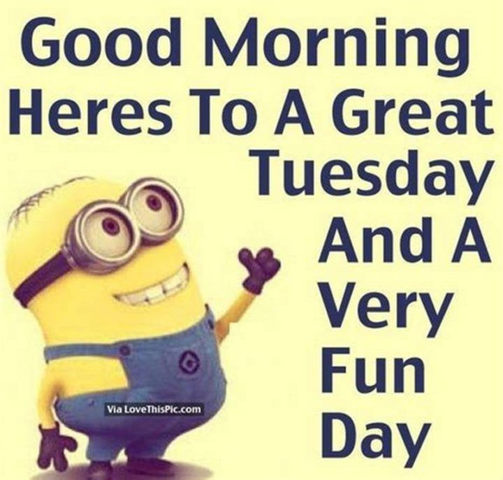 101 Tuesday Memes Good Morning Heres To A Great Tuesday And A Very Fun Day Tuesday Quotes Good Morning Tuesday Good Morning Image Quotes