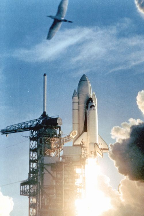 space shuttle columbia april 12 1981 - photo #11