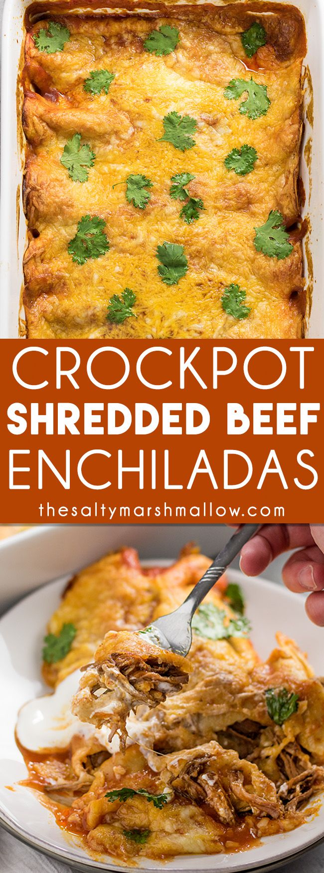 Shredded Beef Enchiladas: These shredded beef enchiladas are an easy to make slow cooker enchilada recipe! Tender Mexican shredded beef slow cooked in the crockpot to perfection, rolled inside of fl
