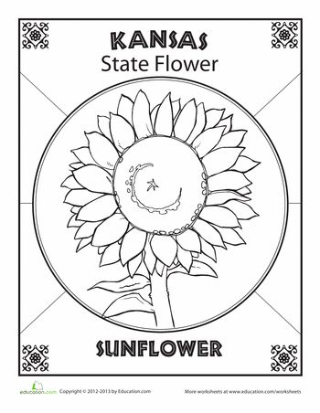 107 best State flower blocks images on Pinterest