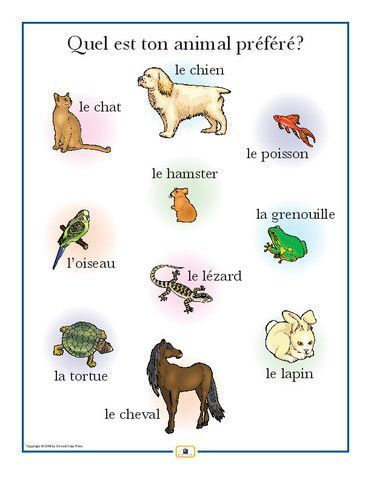 French Pets Poster - Italian, French and Spanish Language Teaching Posters | Second Story Press #spanishnouns