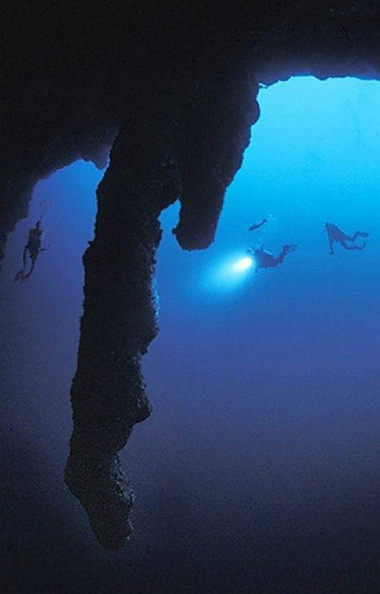 The Great Blue Hole in Belize  is believed to be the world's largest sea-hole. It is about 125 meters deep and its diameter is about 300 meters wide. It has been created as a cause of sea level increase about 65,000 years ago. - http://iliketowastemytime.com/great-blue-hole-belize-worlds-deepest-sea-hole