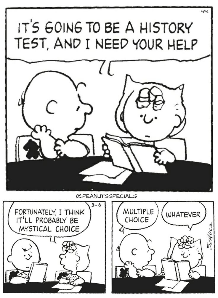 2728 best Snoopy & Peanuts Gang images on Pinterest