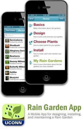 72 Best Images About Rain Garden Ideas On Pinterest