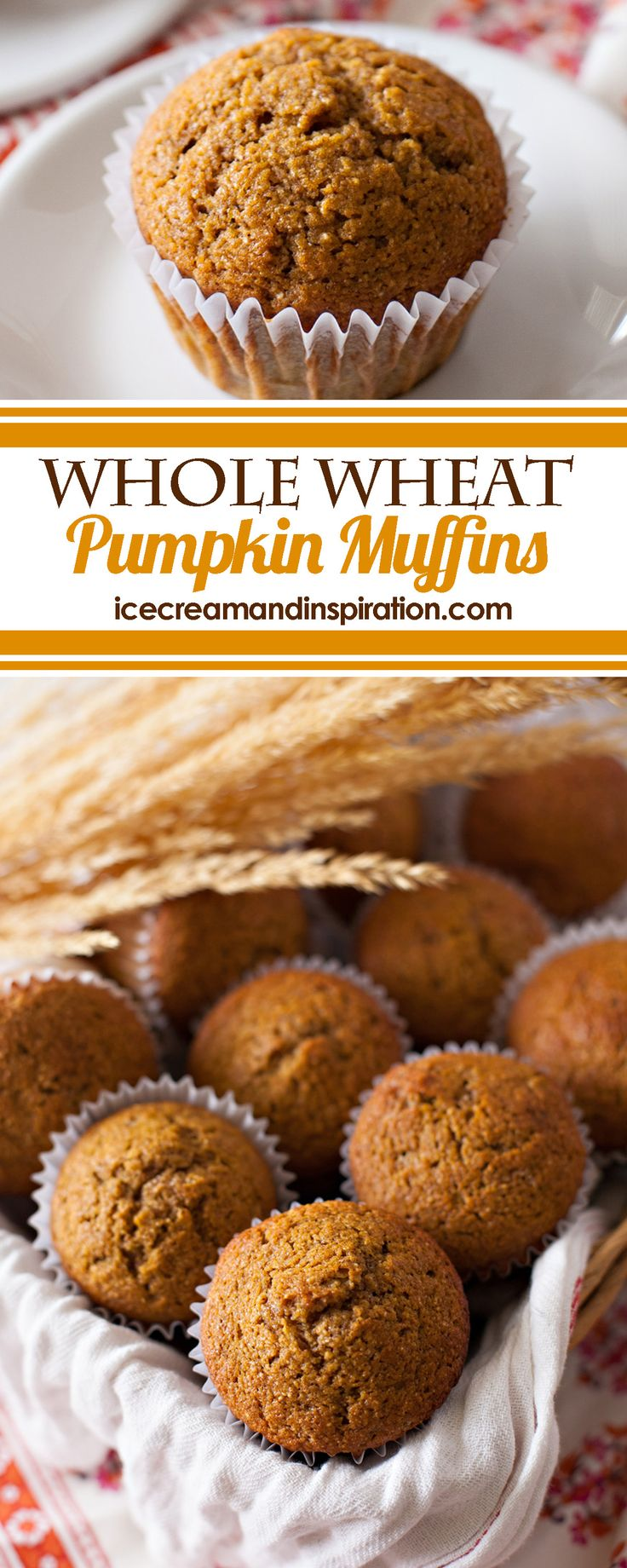 These healthy Whole Wheat Pumpkin Muffins have less sugar than traditional muffins and are chock-full of fiber and nutrients!