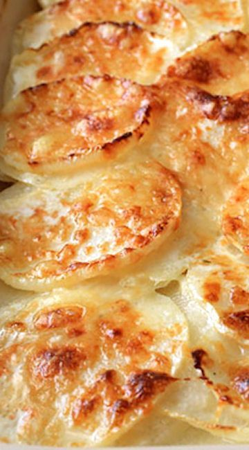 Turnips Au Gratin.  Family begged me to make it a 2nd time! This is a winner!                                                                                                                                                                                 More