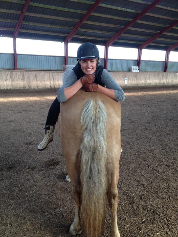 hest ridesport ridning
