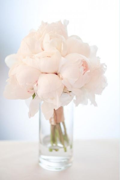 Peonies | Claire Zinnecker's Essentials | Camille Styles