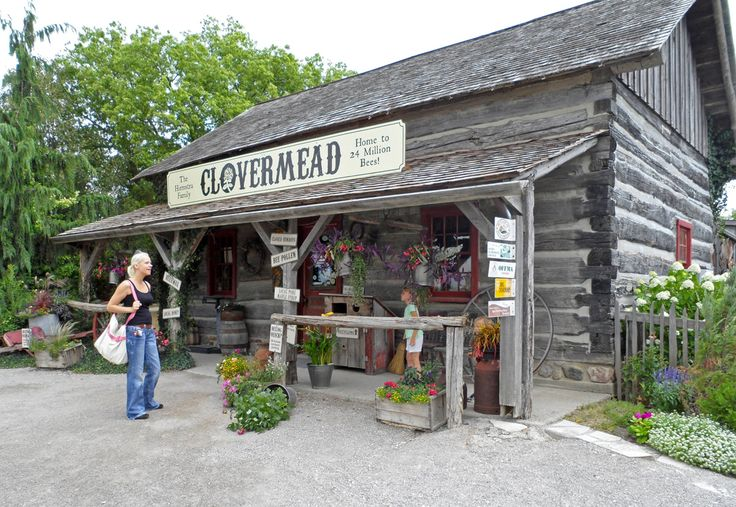 Clovermead is an adventure farm with tons of different things to do all themed around honey and bees. Great for kids and for adults alike. Very well done place. More here: http://www.clovermead.com/    Events:    Annual Bee Beard Competition  http://londontips.ca/clovermeads-8th-annual-bee-beard-competition    Honey Harvest Festival  http://londontips.ca/honey-harvest-festival    Saturday Afternoon's with the Beekeeper  http://londontips.ca/saturday-afternoon%E2%80%99s-beekeeper