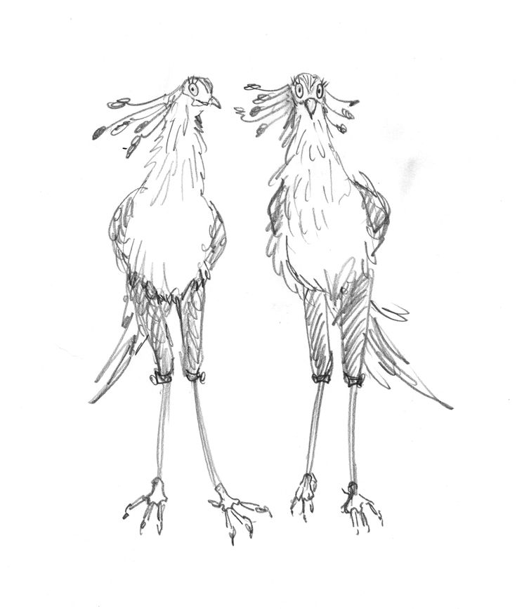 a pair of full body pencil character sketches for Leonard. #leonarddoesntdance #bird #secretarybird #picturebook #charactersketch #franceswatts