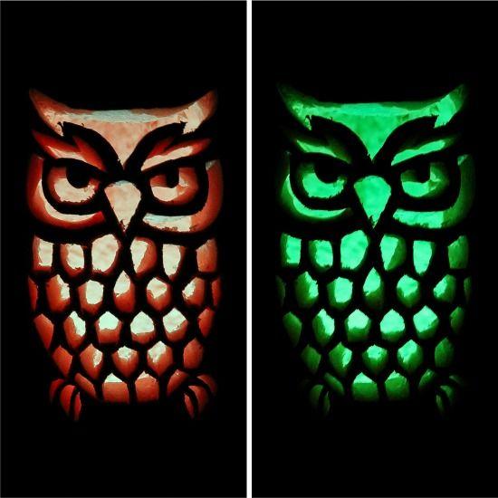 Best 20 owl pumpkin ideas on pinterest owl pumpkin for Simple owl pumpkin pattern