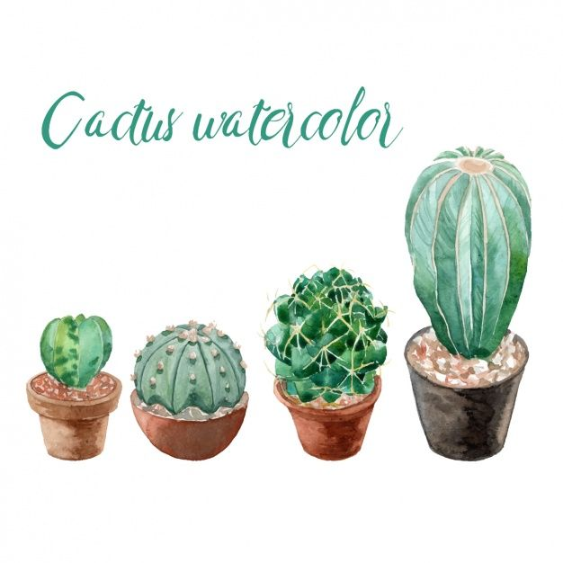 collection de cactus Aquarelle Vecteur gratuit