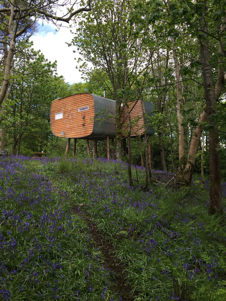 Brockloch Treehouse - Dumfries & Galloway. Light streams through dozens of little windows into this contemporary, off-grid treehouse on a peaceful family farm.