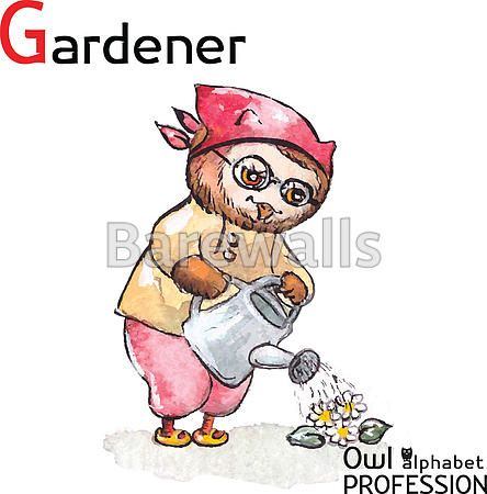 """""""Alphabet professions Owl Letter G - Gardener character on a white background Vector Watercolor."""" - Classroom decor posters and prints available at Barewalls.com"""