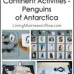 Montessori Continent Activities for North America (or Applied to Other Continents)