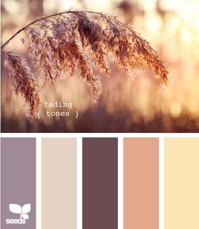 I think this might be the perfect palette for my office remodel.  Cool purples but enough warm tones to keep the beige carpet and a natural wood desk.