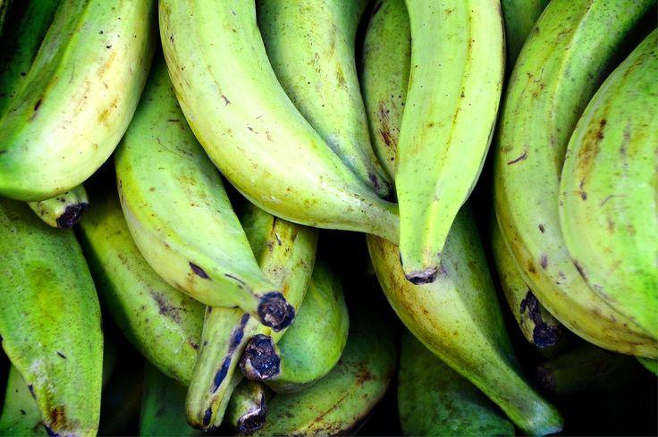 Poisson blanc et bananes plantains au lait de coco (paléo)  Tiré du livre : Le Québec cuisine le monde Pays d'origine de la recette : Comores, Afrique 4 personne – Temps: 30 minutes – cuisson: 25 minutes Ingrédients: 4 filets de tilapia…