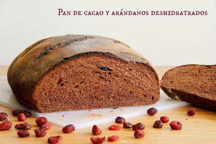 Pan de cacao y arándanos deshidratados - MisThermorecetas