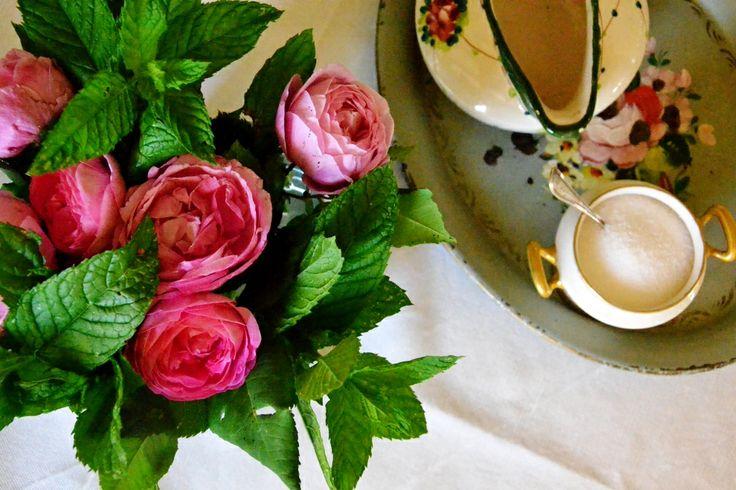 pink#roses#italianbreakfast#cabiancadellabbadessaB&B#rosa#