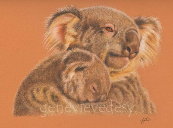 Original Drawing 11x14 Mother and Baby Koala by MatanteGe on Etsy