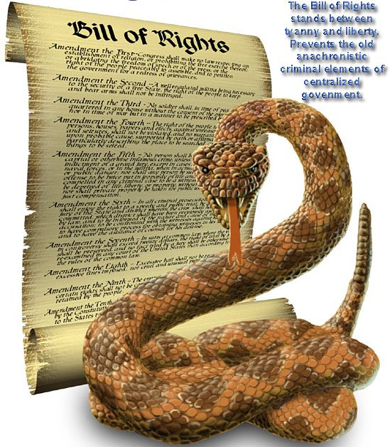 Kansas Governor Signs Bill Nullifying Obama's Violation Of The Bill Of Rights ~ Federal Attempt For Gun Control