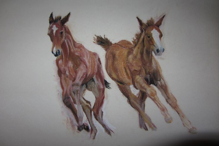 Sneak peak - my christmas card.  Chalk pastel drawing of two foals playing