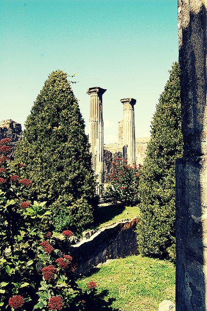 Pompeii. Amazing and so eerie. I absolutely loved visiting Pompeii when I was in Italy.