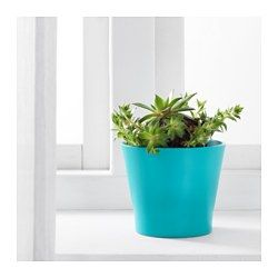 IKEA - PAPAJA, Plant pot, 10.5 cm, , Lacquered interior; makes the plant pot waterproof.