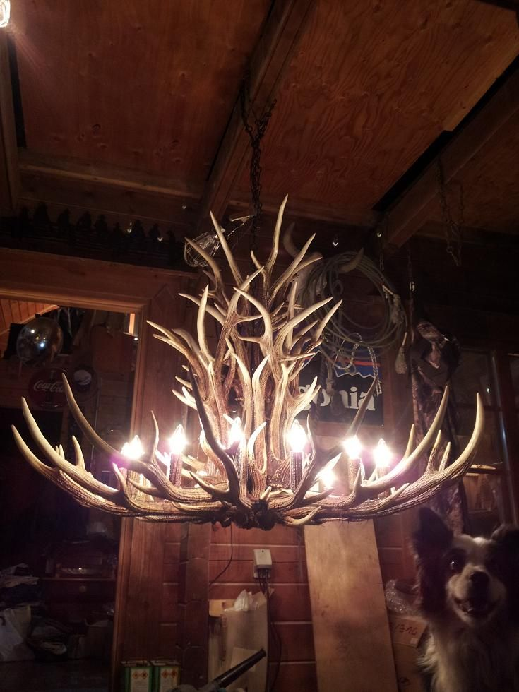 Deer horns chandelier. Imagine this in a gorgeous barn over the dance floor.