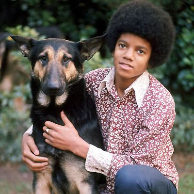 michael jackson with his german sherpard