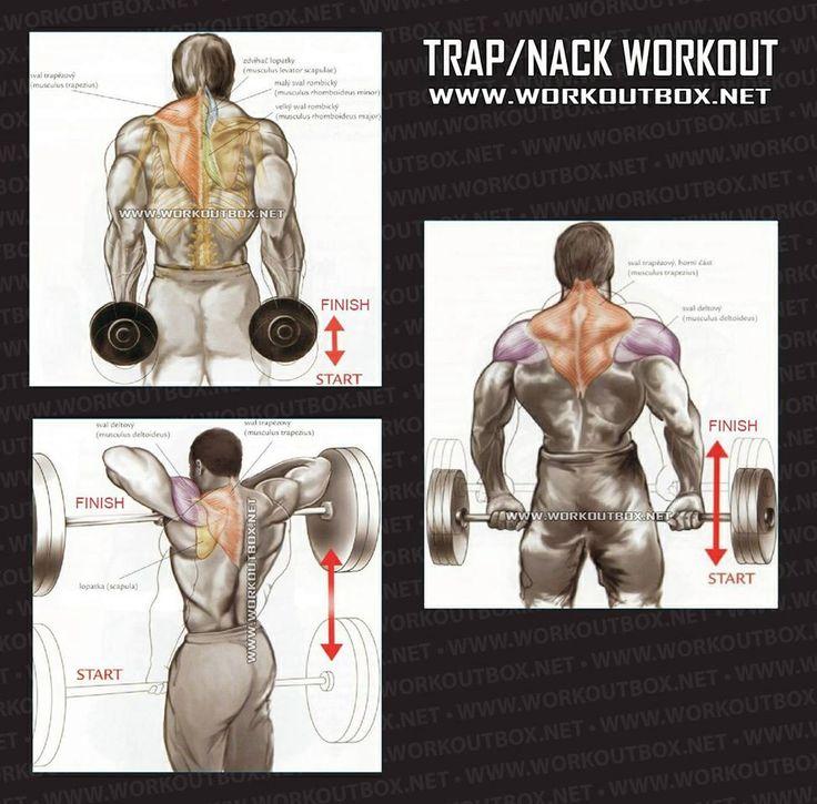 Trap Nack Workout..