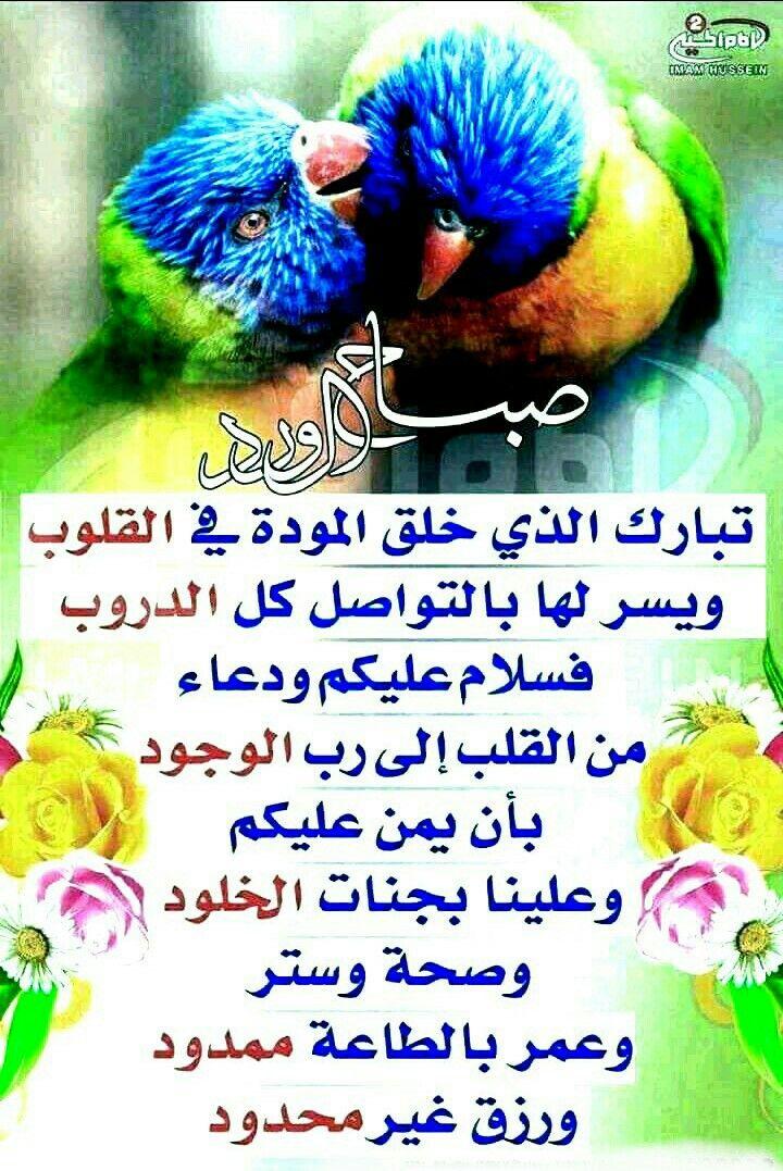 Pin By صمت الرحيل On صباحيات Quotes Qoutes Good Morning