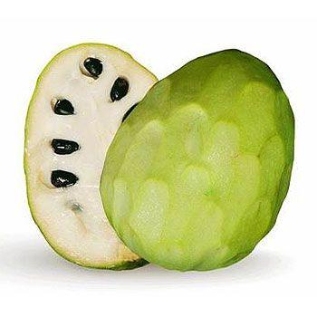 Las chirimoyas son una fruta de fácil digestión lo que las hace muy aconsejables para personas débiles, ancianos y en especial niños y embarazadas.