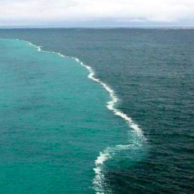 2 oceans meet but do not mix why