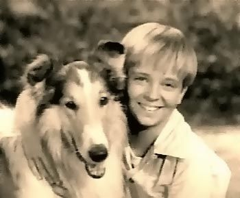 Lassie (CBS 1954 - 1971)Remember, Dogs, Lassi, Childhood Memories, Growing Up, Tommy Rettig, Timmy, Jeff, Favorite