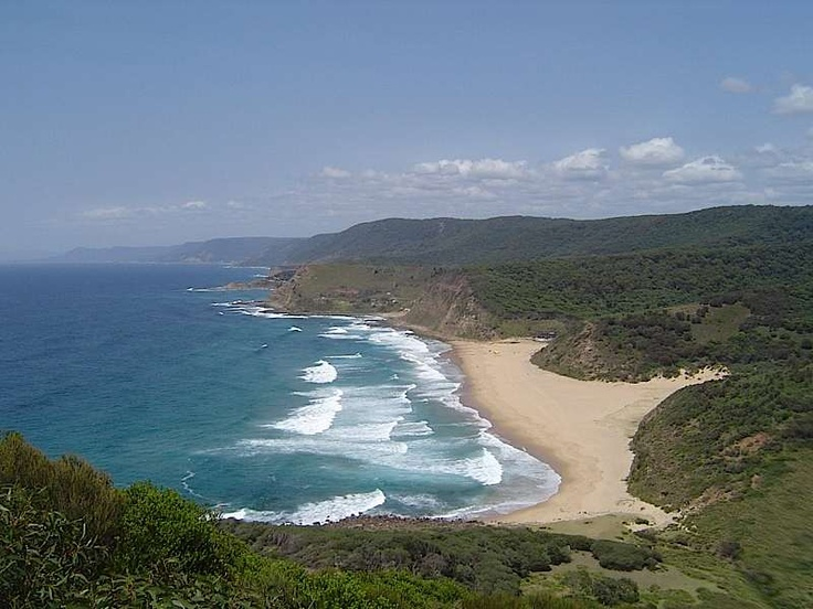 Royal National Park between Sydney and Wollongong, NSW, Australia.