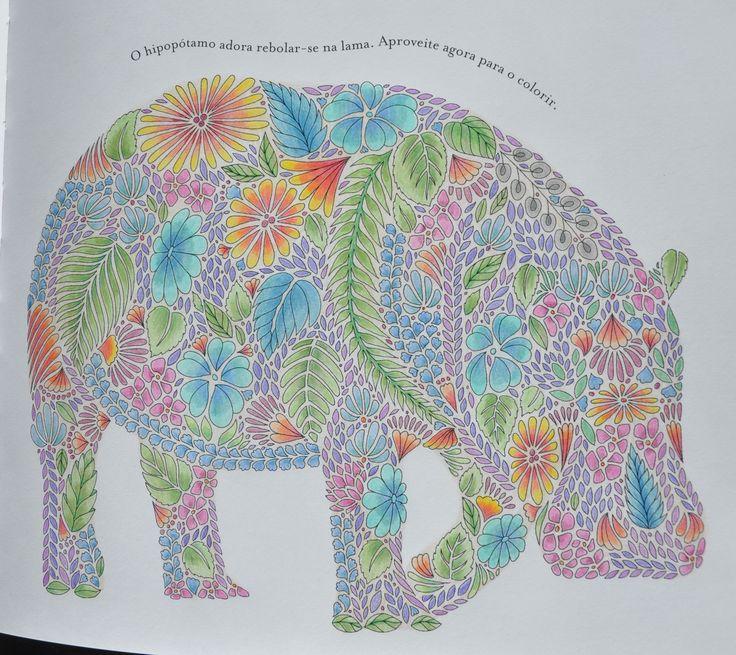 308 Best Ac Elephant Hippo Images On Pinterest