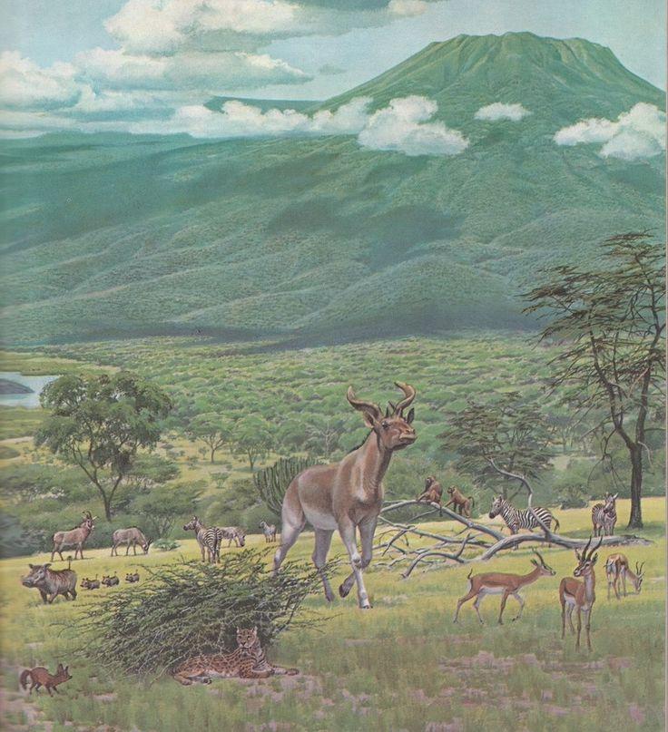Prehistoric Olduvai Gorge bybJay H. Matternes