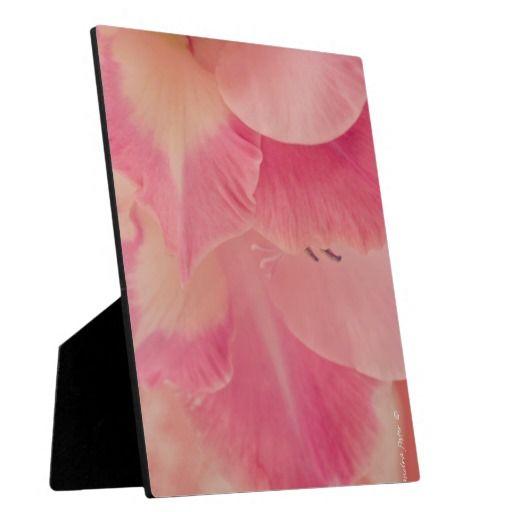 Gladiola Petals Photo Plaque