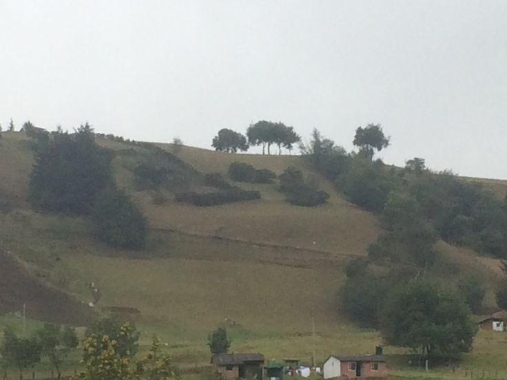 Centro de Rescate - Montaña de Oración en Choconta, Boyaca.