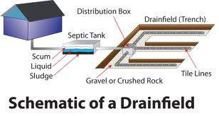 Diagnosing a Septic Tank Drainfield Problem